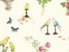 perroquet_ncf3820-021