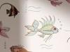 aquarium_ncw3833_031